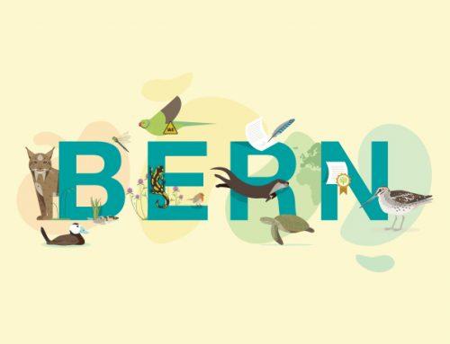 The Bern Convention Anniversary